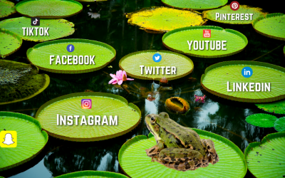 Which Social Media Platforms Does My Business Need?